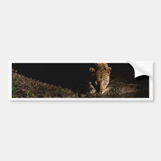 Adesivo De Para-choque Leopardo africano