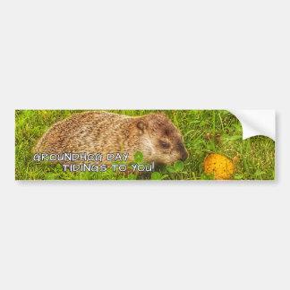 Adesivo De Para-choque Notícias do dia de Groundhog a você! autocolante
