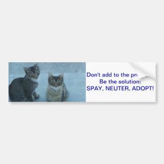 Adesivo De Para-choque O gatinho disperso adorável envia uma mensagem