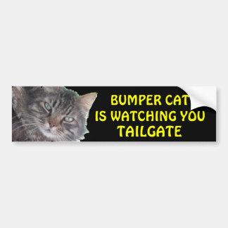 Adesivo De Para-choque O gato abundante está olhando-o BAGAGEIRA 39 Meme