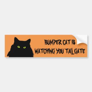 Adesivo De Para-choque O gato abundante está olhando o preto e a laranja