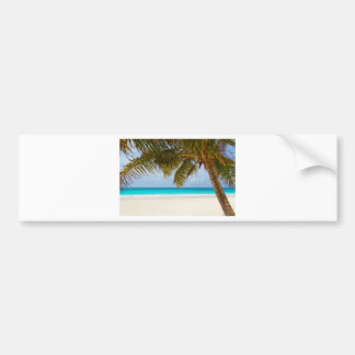 Adesivo De Para-choque Palmeira verde na praia durante o dia