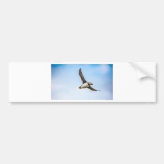 Adesivo De Para-choque Pena da mosca dos animais selvagens do vôo do mar