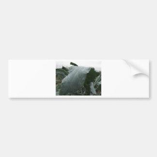 Adesivo De Para-choque Pingos de chuva nas folhas da couve-flor