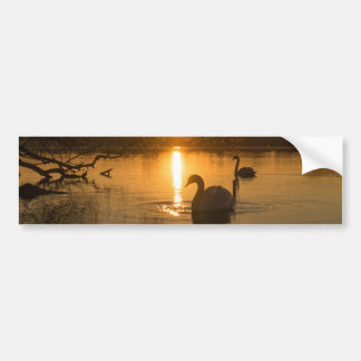 Adesivo De Para-choque Por do sol com cisne