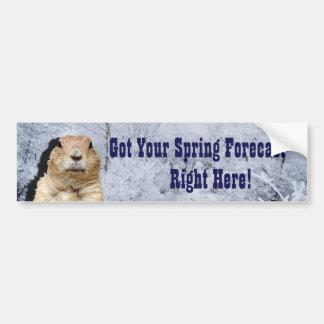 Adesivo De Para-choque Previsão do primavera de Groundhog