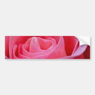 Adesivo De Para-choque Rosa Unfurling do rosa