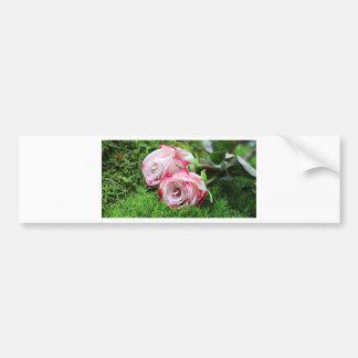 Adesivo De Para-choque rosas
