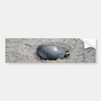 Adesivo De Para-choque Tartaruga