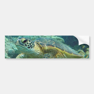 Adesivo De Para-choque Tartarugas em Havaí