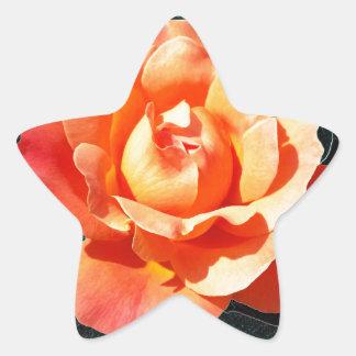 Adesivo Estrela A laranja brilhante aumentou