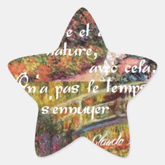 Adesivo Estrela A natureza no art. de Monet