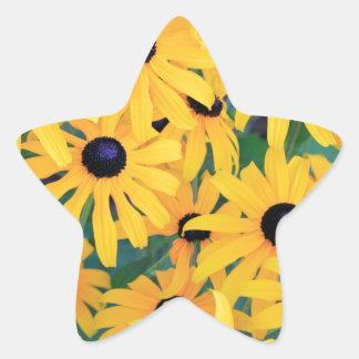 Adesivo Estrela Amarelo das flores de Susan de olhos pretos dentro