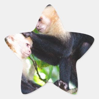 Adesivo Estrela Amor do macaco