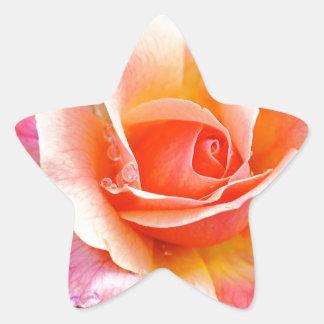 Adesivo Estrela Aperfeiçoe cor-de-rosa na flor