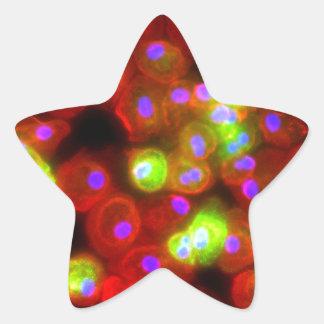 Adesivo Estrela Arte da ciência das pilhas do macrófago