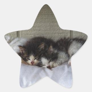 Adesivo Estrela Belas Adormecidas