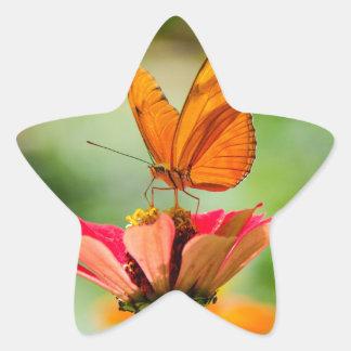 Adesivo Estrela Borboleta brilhante na margarida alaranjada
