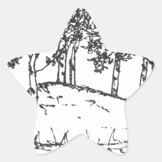 Adesivo Estrela Bosque de Aspen