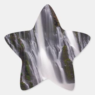 Adesivo Estrela Burney cai na cor