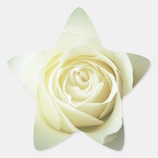 Adesivo Estrela Caneca do rosa branco