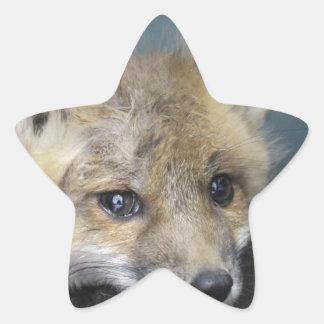 Adesivo Estrela Capa de telefone do Fox