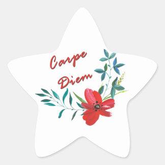 Adesivo Estrela Carpe Diem