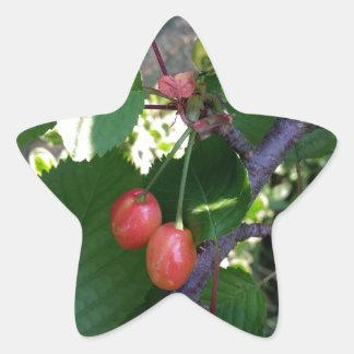Adesivo Estrela Cerejas que giram o vermelho