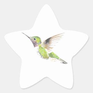 Adesivo Estrela Colibri