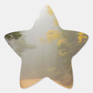 Adesivo Estrela Cruzamento na névoa do outono