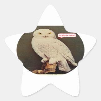 Adesivo Estrela desenho branco da coruja