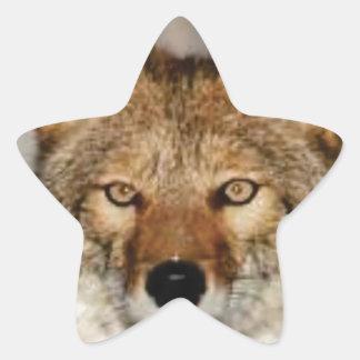 Adesivo Estrela do chacal fim acima