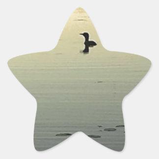 Adesivo Estrela Dois mergulhões-do-norte