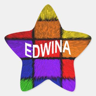 ADESIVO ESTRELA EDWINA
