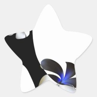 Adesivo Estrela Elegante preto alto-colocou saltos calçados.