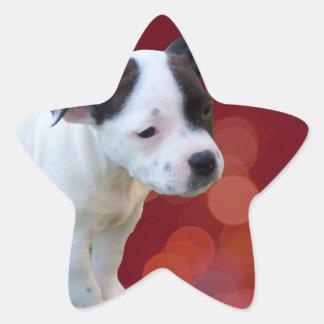 Adesivo Estrela Filhote de cachorro preto e branco de