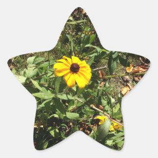 Adesivo Estrela Flores azuis de Ridge