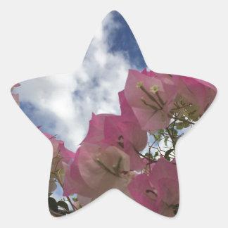 Adesivo Estrela flores cor-de-rosa contra um céu azul