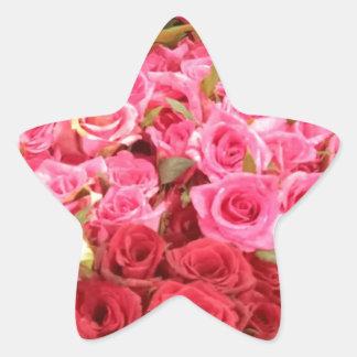 Adesivo Estrela Flores nas Filipinas, no rosa e nas rosas