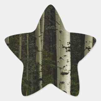 Adesivo Estrela Floresta branca