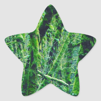 Adesivo Estrela Floresta verde