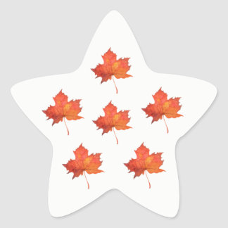 Adesivo Estrela Folha de bordo da aguarela