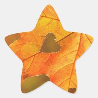 Adesivo Estrela Folha no coração