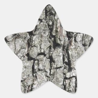 Adesivo Estrela Fundo da textura do latido de árvore da pera