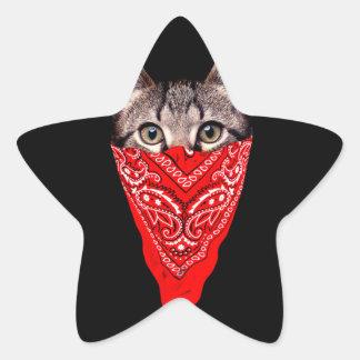 Adesivo Estrela gato do gângster - gato do bandana - grupo do gato