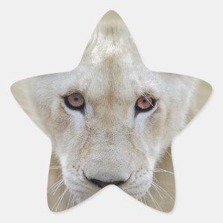 Adesivo Estrela Guerreiro branco África do espírito do leão