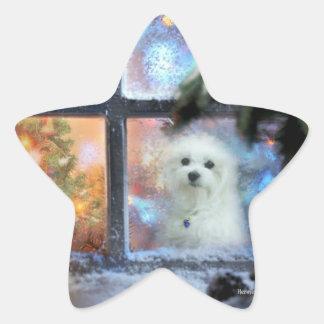 Adesivo Estrela Hermes o maltês
