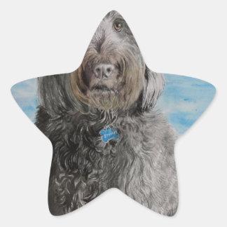 Adesivo Estrela Labradoodle Stewart