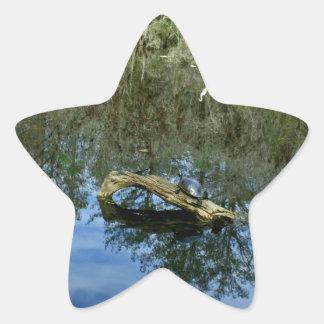 Adesivo Estrela Lagoa da cinza do pop