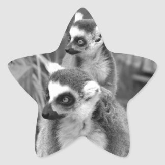 Adesivo Estrela lemur Anel-atado com o bebê preto e branco